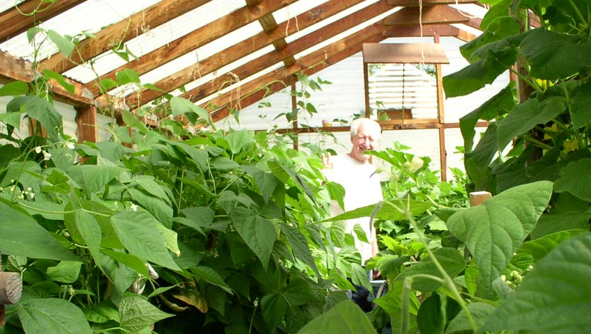 <h1>Visit the greenhouses.</h1><p>At the garden take a look at the green houses.  Green beans, tomatoes, cucumbers, squash, peppers, and zucchini are usually grown there.</p>