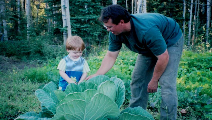 <h1>A giant cabbage year.</h1><p>Long days of sunshine in the right conditions will produce a giant cabbage in many Alaskan gardens.  We grew this one several years ago.</p>